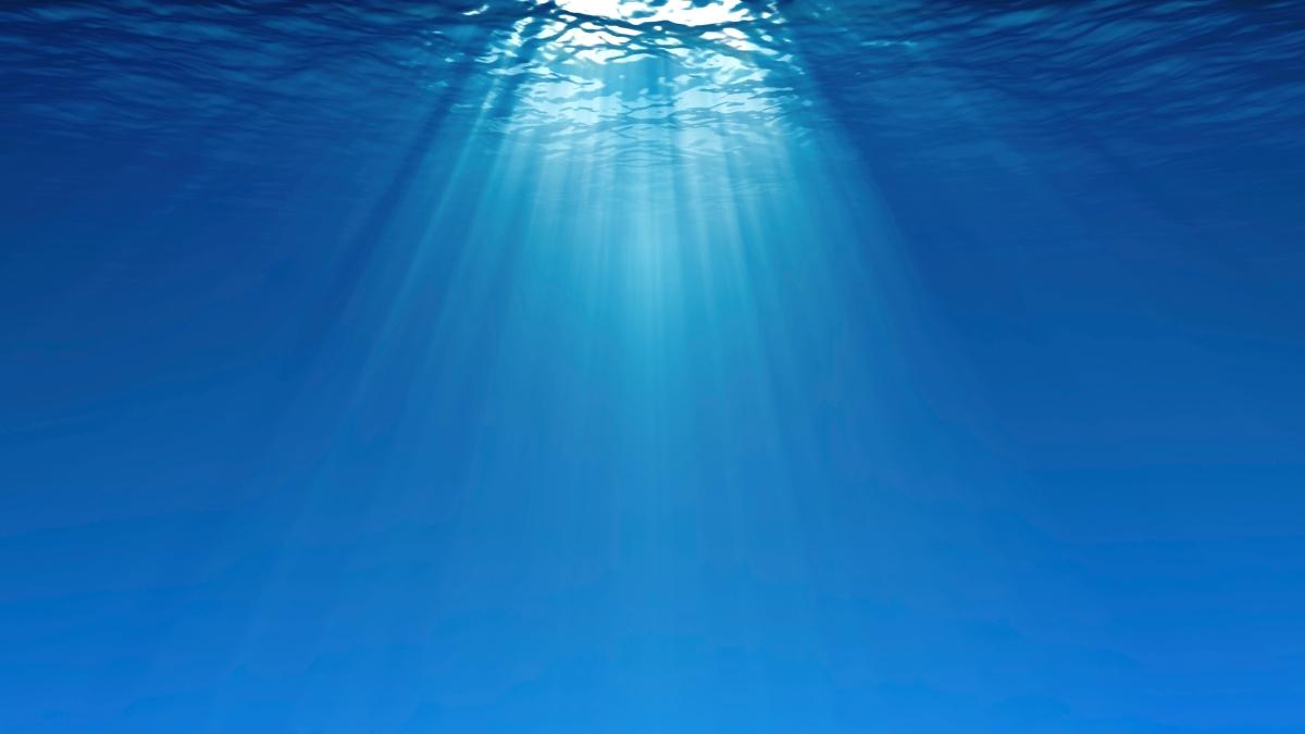 okeansko osećanje? (ulomak iz Dušan Pajin, Okeansko osećanje)