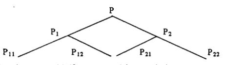 Sosa piramida